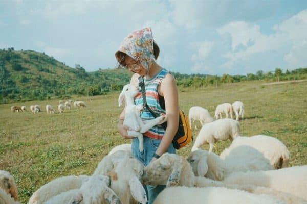 Tour Hồ Chí Minh - Vũng Tàu 2 ngày 1 đêm