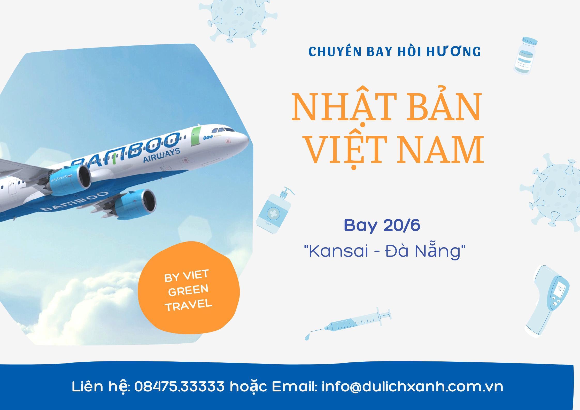 Bay Bamboo nhập cảnh từ Nhật Bản + Cách ly 21 ngày