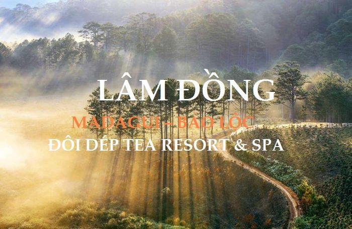 Hồ Chí Minh - Madagui - Bảo Lộc + Nghỉ Dưỡng Resort 4* 2 ngày 1 đêm